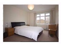 SHORT-LET: Spacious Room in Shoreditch