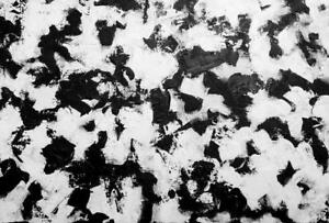 "27x35"" BLACK AND WHITE PAINTING Original Abstract Art Oakville GLOBAL WARMING #3"
