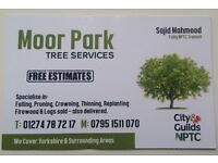 TREE CUTTING SERVICE (FIRELOGS ALSO AVAILABLE)
