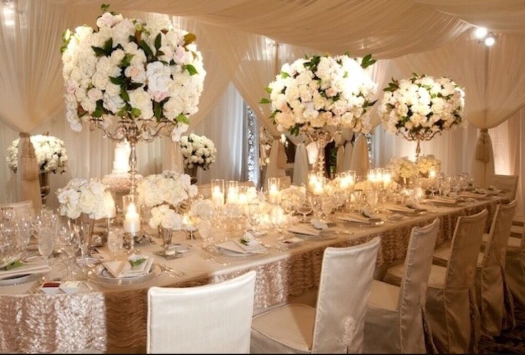 Eden wedding and party planners wedding decorators venue stylists eden wedding and party planners wedding decorators venue stylists venue decorators junglespirit Images