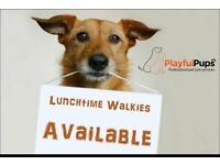 PlayfulPups - Dog Walker and Pet Sitting Services Tailored to Your Pets Needs.