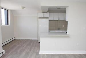 LARGE  Renovated1 Bedroom Utilities Included ~ Downtown