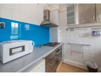 ZONE 1, NICE HOUSE AND REASONABLE PRICE. DOUBLE NORMAL ROOM, SINGLE OR DOUBLE USE. SE1 4XZ