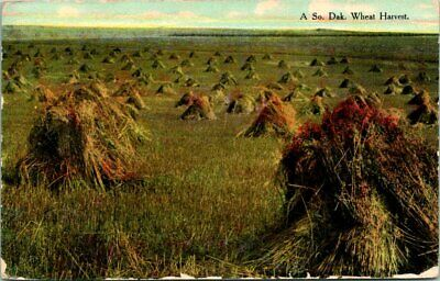 "Antique Postcard WOLSEY South Dakota ""WHEAT HARVEST"" WHEAT FIELD 1912"