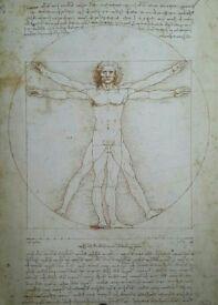 Da Vinci Vitruvian Man Art Poster