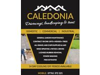 Caledonia - Driveways, Landscaping and Trees