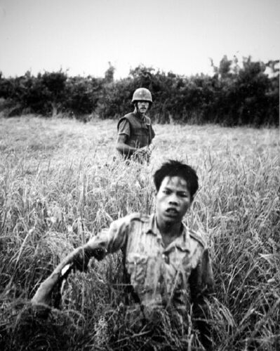 US Marine with Viet Cong POW 8x10 Vietnam War Photo 52