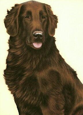 Brown Flat Coated Retriever - Nigel Hemming JUST DOGS - LIVER FLAT COATED RETRIEVER Brown Gun Dog Flatcoat Art