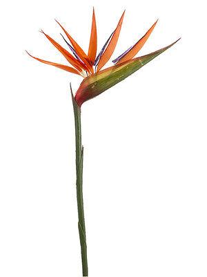 "36"" Bird of Paradise Artificial Bendable Silk Flower (Pack of 12) Decor Wedding"