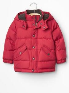 New with Tags !!! Baby Gap PrimaLoft Luxe jacket 2 and 3 yrs