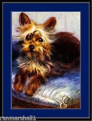 Yorkshire Terrier Dog Picture (English Print Yorkshire Terrier Pup Dog Art)