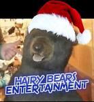 HAIRY-BEARS-