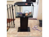 2ft juwel Fish tank and stand