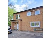 4 bedroom house in Beeches Hollow, Sheffield , S2 (4 bed)