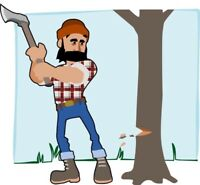 Tree Removal & Trimming - The Tree Doctor