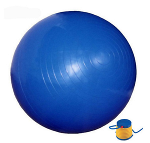 Anti-Burst 65cm Gym Ball with Pump Coogee Eastern Suburbs Preview