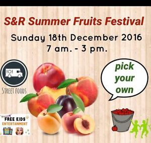 Summer fruits Kalamunda Kalamunda Area Preview