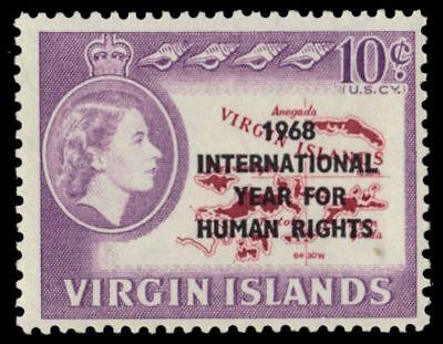 VIRGIN ISLANDS 190 (SG224) - International Year for Human Rights (pa64640)