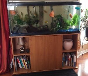 50 Gallon Aquarium incl Fish