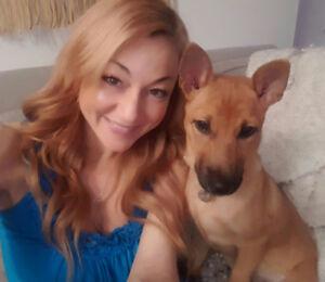 PUPPY TRAINER AND DOG WALKER!  $15