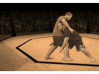 Training partner in MMA grappling / wrestling / BJJ / jiu jitsu
