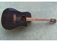 Fender T-Bucket 300CE plus gig bag £120.