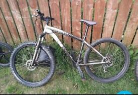 Speciised mountain bike