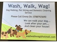 Dog Walking, Pet Sitting and Domestic Cleaning Service