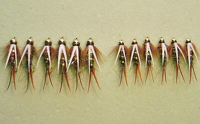 1 Doz Beadhead ELECTRIC PRINCE nymphs Trout fly fishing Sz assort 12-14-16