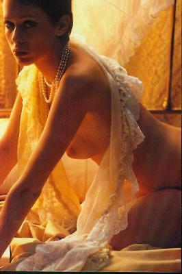 SYLVIA KRISTEL: 1  Foto (20x30cm)  des Erotikstars (EMANUELLE); Nude; Busen -g5-