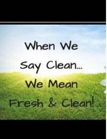 Domestic Cleaning , House Cleaner , Ironing , Cleaning Service, private cleaner