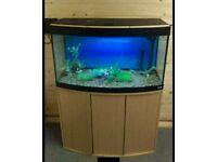Fluval Vimcenza 180L Fish Tank Full Setup w External Filter