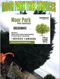 MOOR PARK TREE SERVICES ****FREE QUOTATION****