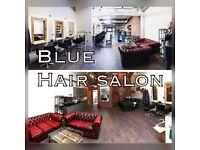 Apprentice Hairdresser at Blue Hair Studio