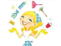 Brigitta's cleaning service