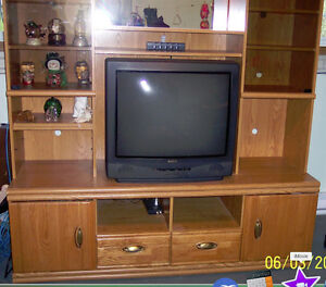 Large Entertainment Center - FREE