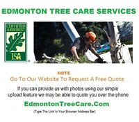 E★ Need Tree Care Service -> Click Image For Free Quote Info