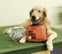 WALKS 'N' WAGS PET FIRST AID CERTIFICATE COURSE