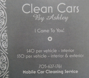 Mobile Car Cleaning Service
