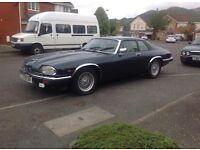 classic car Jaguar XJS