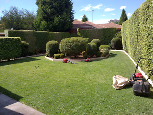 Top price lawn mowing services all areas Campbelltown Campbelltown Area Preview