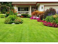 Garden Service and Home Maintenance