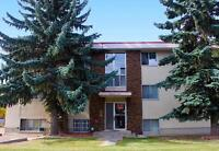 Allen Manor - 2 Months Rent Free -  Apartment for Rent