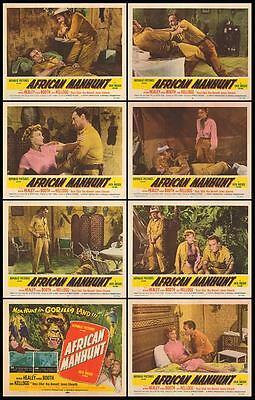 AFRICAN MANHUNT orig 1955 lobby card set MYRON HEALEY/KARIN BOOTH 11x14 posters