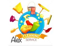 Domestic Cleaner, Professional Cleaning and Ironing Services, Office Cleaning