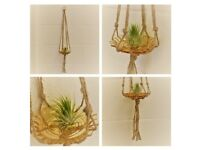 Amber Vintage Glass & Macrame Air Plant Hanger (plant not included): @ebbandflowhome