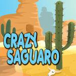 CrazySaguaro