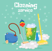 Professional Cleaner Available!