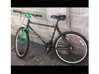 Marin muirwoods retro bike