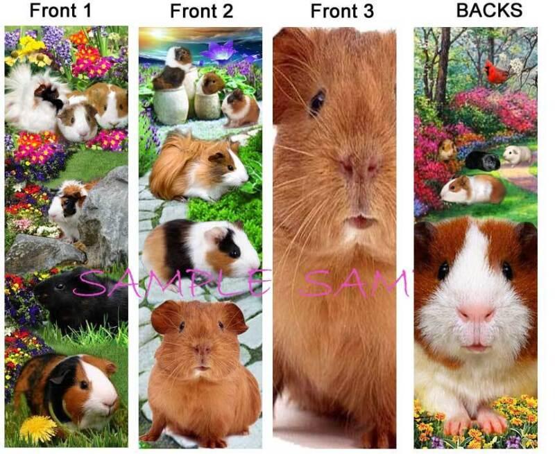 3 Lot-GUINEA PIG BOOKMARK-Artisan Small Pet Book CARD Ornament Short & Long Hair